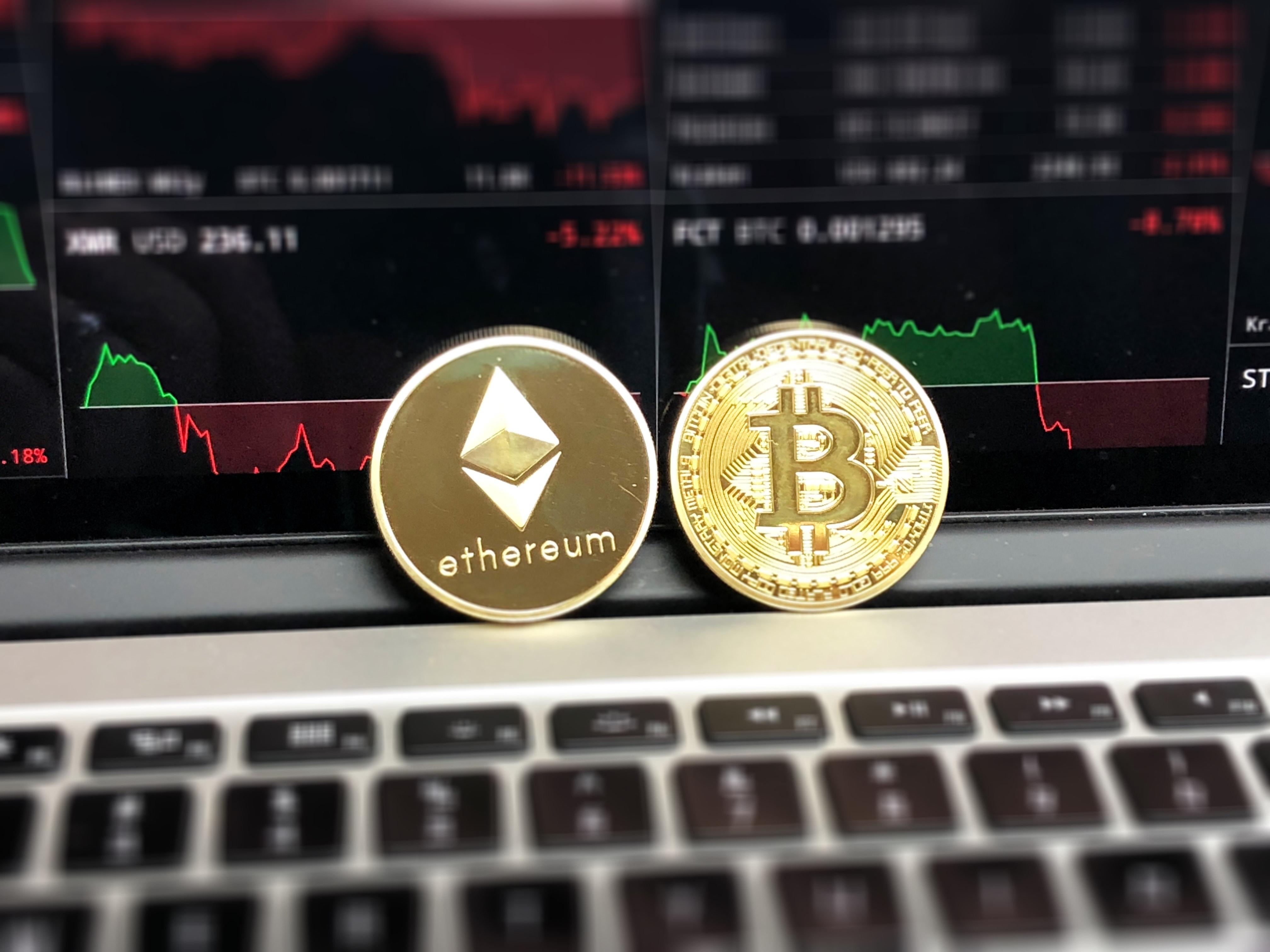 conselho de investimento criptomoeda